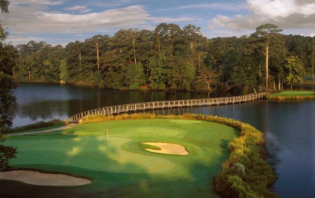Alan Baxter Wins But Matthew Makes Biggest Impact In Usa Greencard Golf