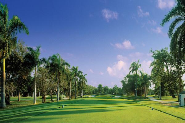 best-golf-courses-jamaica-half-moon